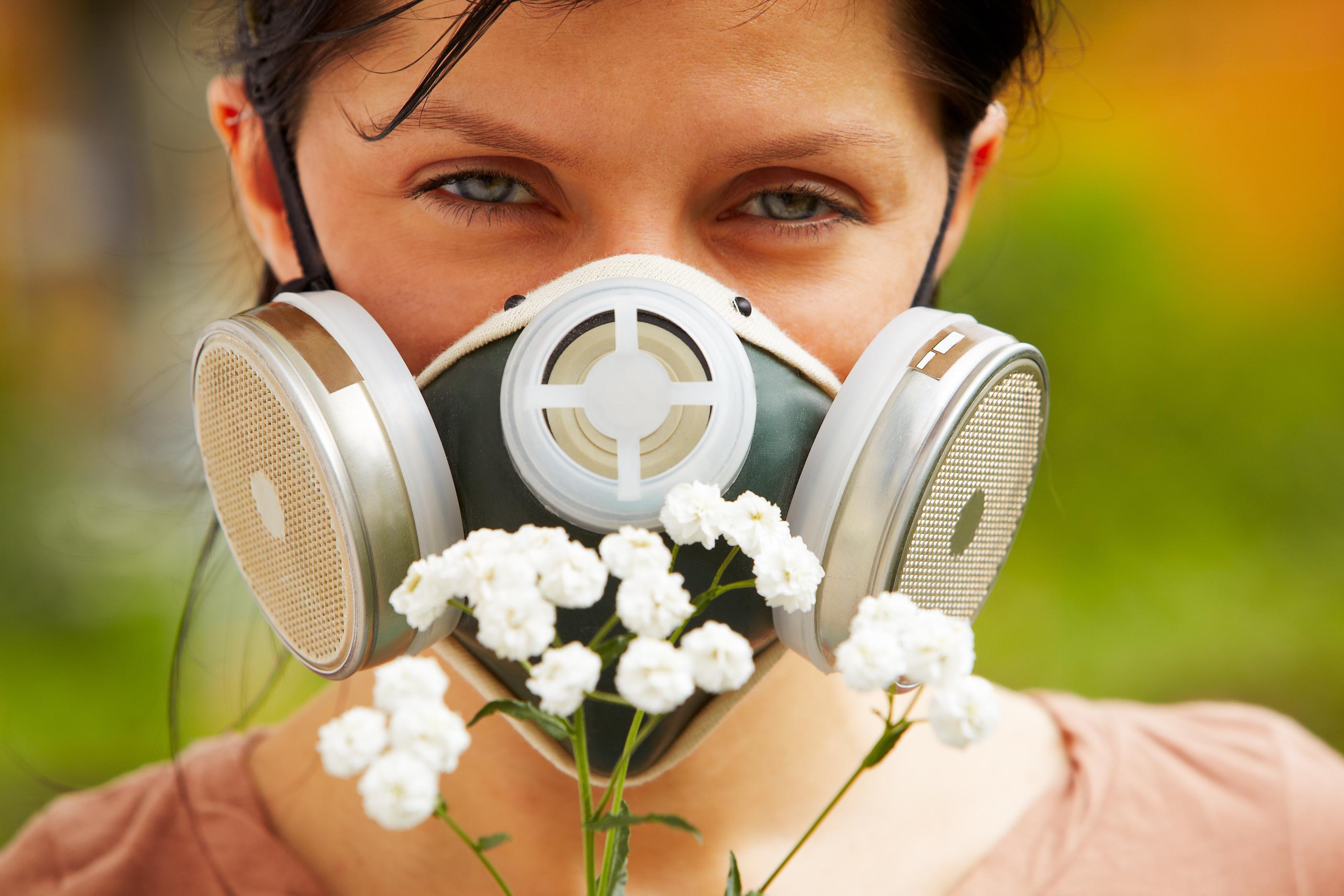 Resultado de imagen para alergia a la primavera